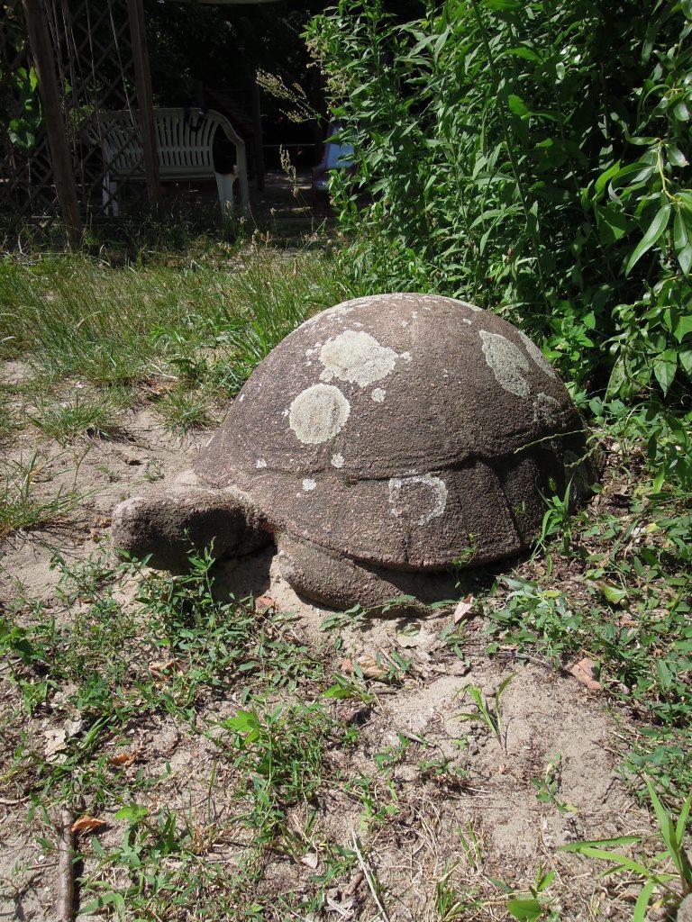 Schildkröte Bildhauerei In Berlin